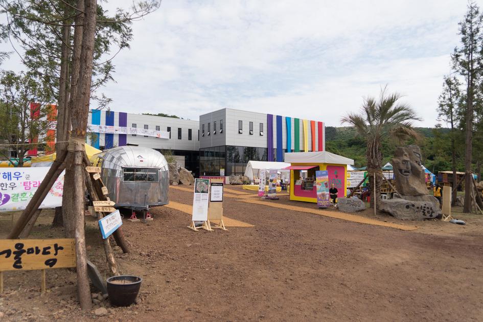 제주 남이섬 탐나라 공화국 노랑축제 이야기